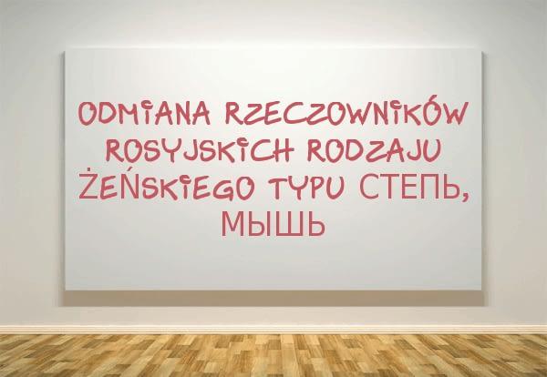 Odmiana rzeczowników rosyjskich rodzaju żeńskiego typu степь, мышь