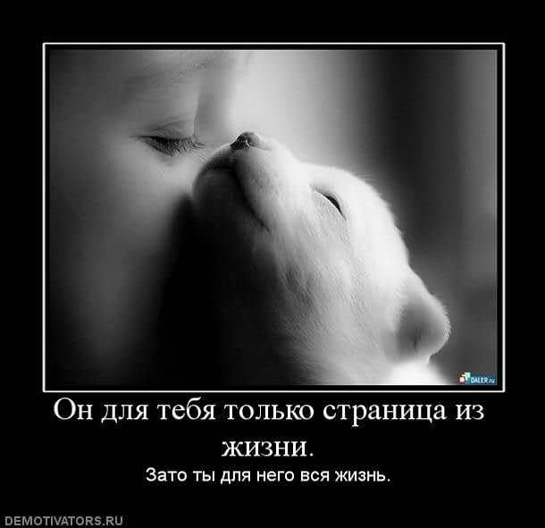on-dlya-tebya-tolko-stranitsa-iz-zhizni